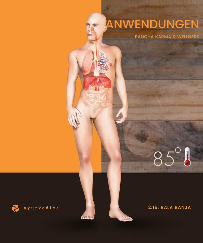 Bala-Banja-Ayurveda-Massage-Ernährung-Doshas-Bamberg-Erlangen--Nürnberg-Coburg-Bayreuth-Würzburg-Ayurvedica-25x30cm