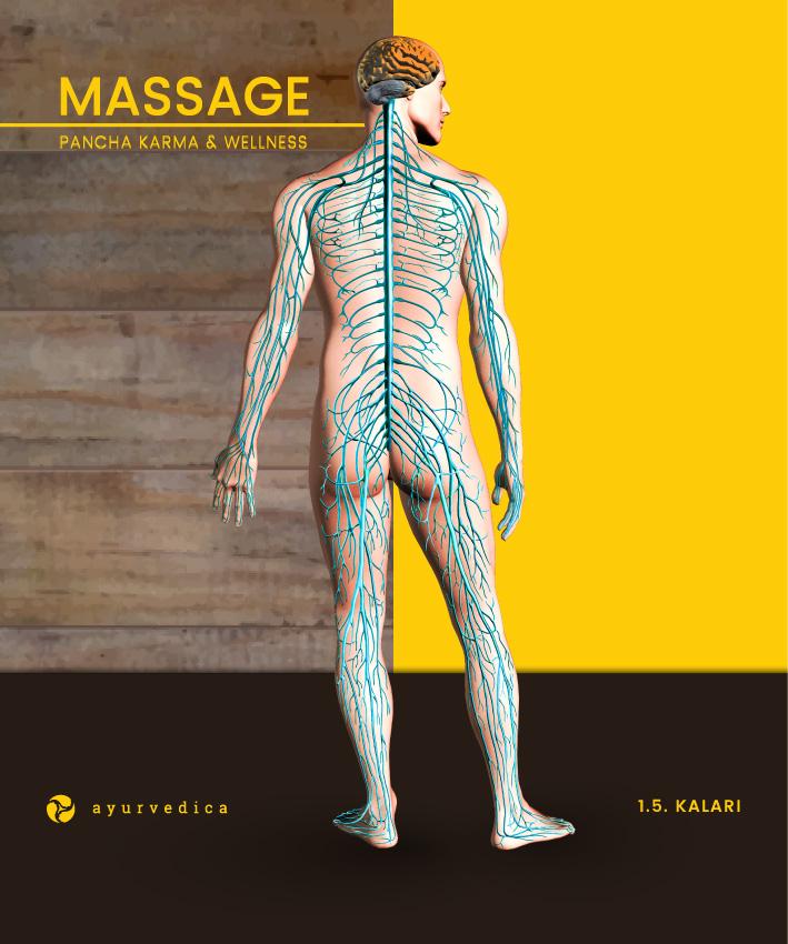 Kalari-Ayurveda-Massage-Ernährung-Doshas-Bamberg-Erlangen--Nürnberg-Coburg-Bayreuth-Würzburg-Ayurvedica-25x30cm-a