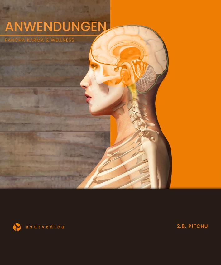 Pitchu-Ayurveda-Massage-Ernährung-Doshas-Bamberg-Erlangen--Nürnberg-Coburg-Bayreuth-Würzburg-Ayurvedica-25x30cm