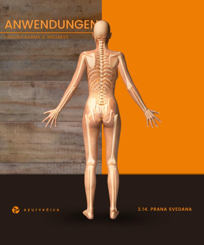 Prana-Svedana-Ayurveda-Massage-Ernährung-Doshas-Bamberg-Erlangen--Nürnberg-Coburg-Bayreuth-Würzburg-Ayurvedica-25x30cm