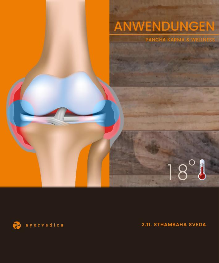 Sthambaha-Sveda-Ayurveda-Massage-Ernährung-Doshas-Bamberg-Erlangen--Nürnberg-Coburg-Bayreuth-Würzburg-Ayurvedica--Ayurveda-SPA-Bamberg-Shop-Nürnberg