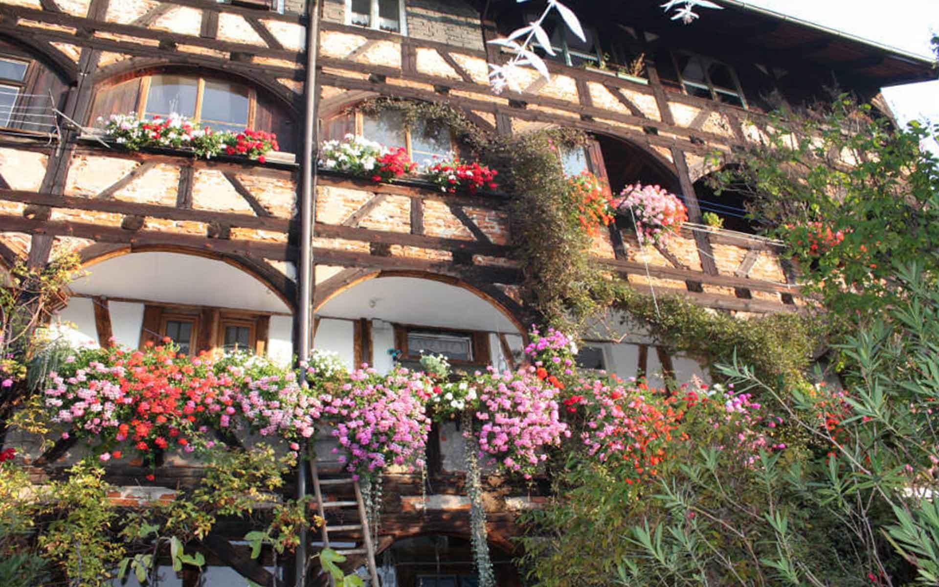 Ayurveda-Gerberhaus-Bamberg-5-a